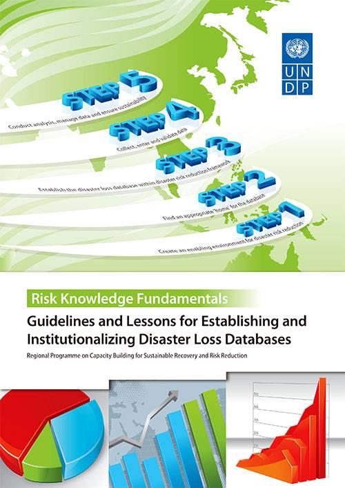 Guidelines and Lessons for Establishing and Institutionalizing Disaster Loss Databases