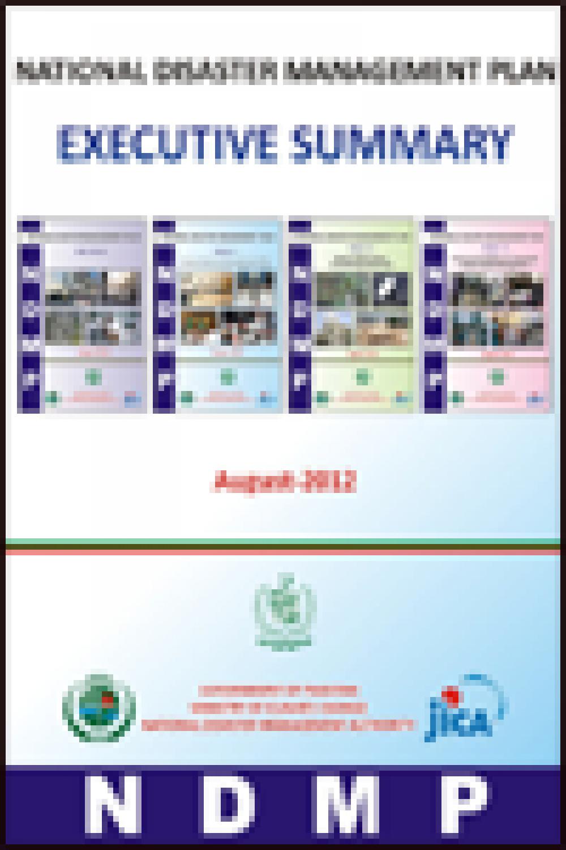 NDMP-Executive Summary